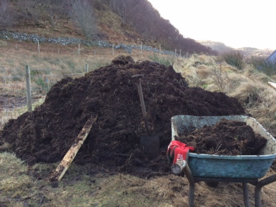 Final barrow full of soil ready for composting